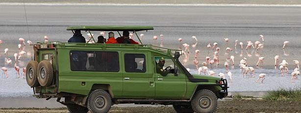 Toyota Land Cruisers Hard Top Extended carhire uganda