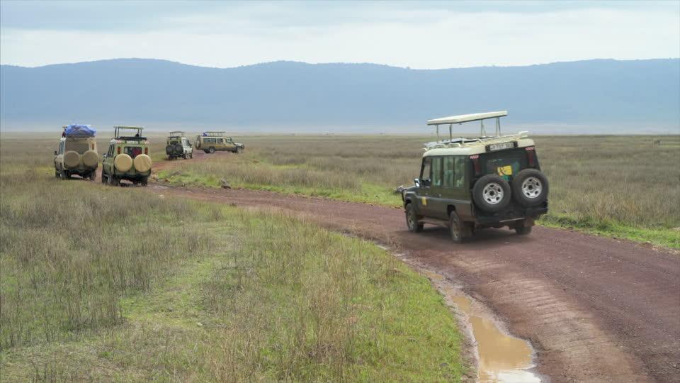 customized safari jeep
